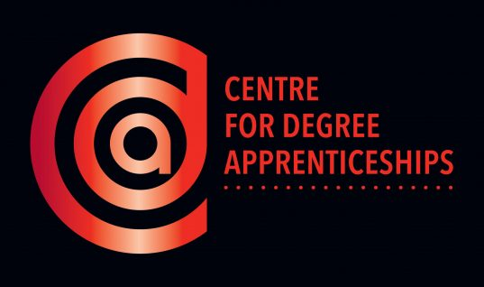 Institutional conditions for sustainable degree apprenticeships – FOR ACTION